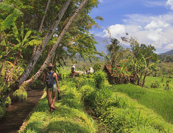 Walking along the rice fields in Sidemen - Bali