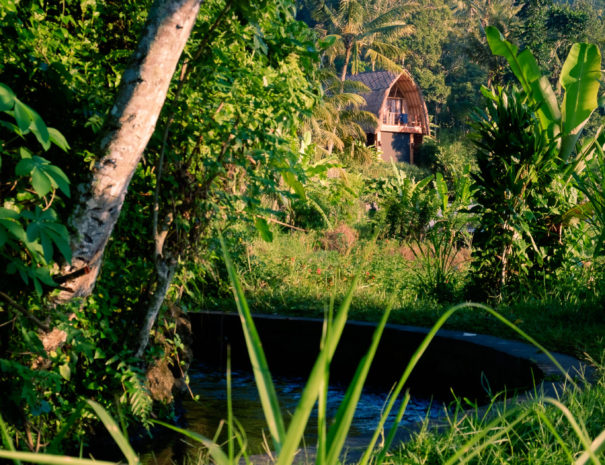 Villa Umah Dewi Sri - Bali - Sidemen - Umah Sri-1-3