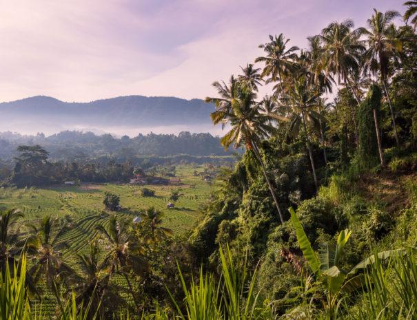 Villa Umah Dewi Sri - Bali - Sidemen - Umah Sri-1