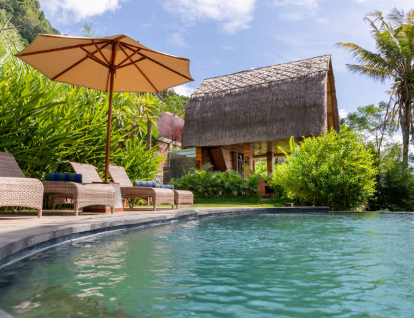 View over the infinity pool onto holiday accommodation Villa Uma Dewi Sri in Sidemen in Bali